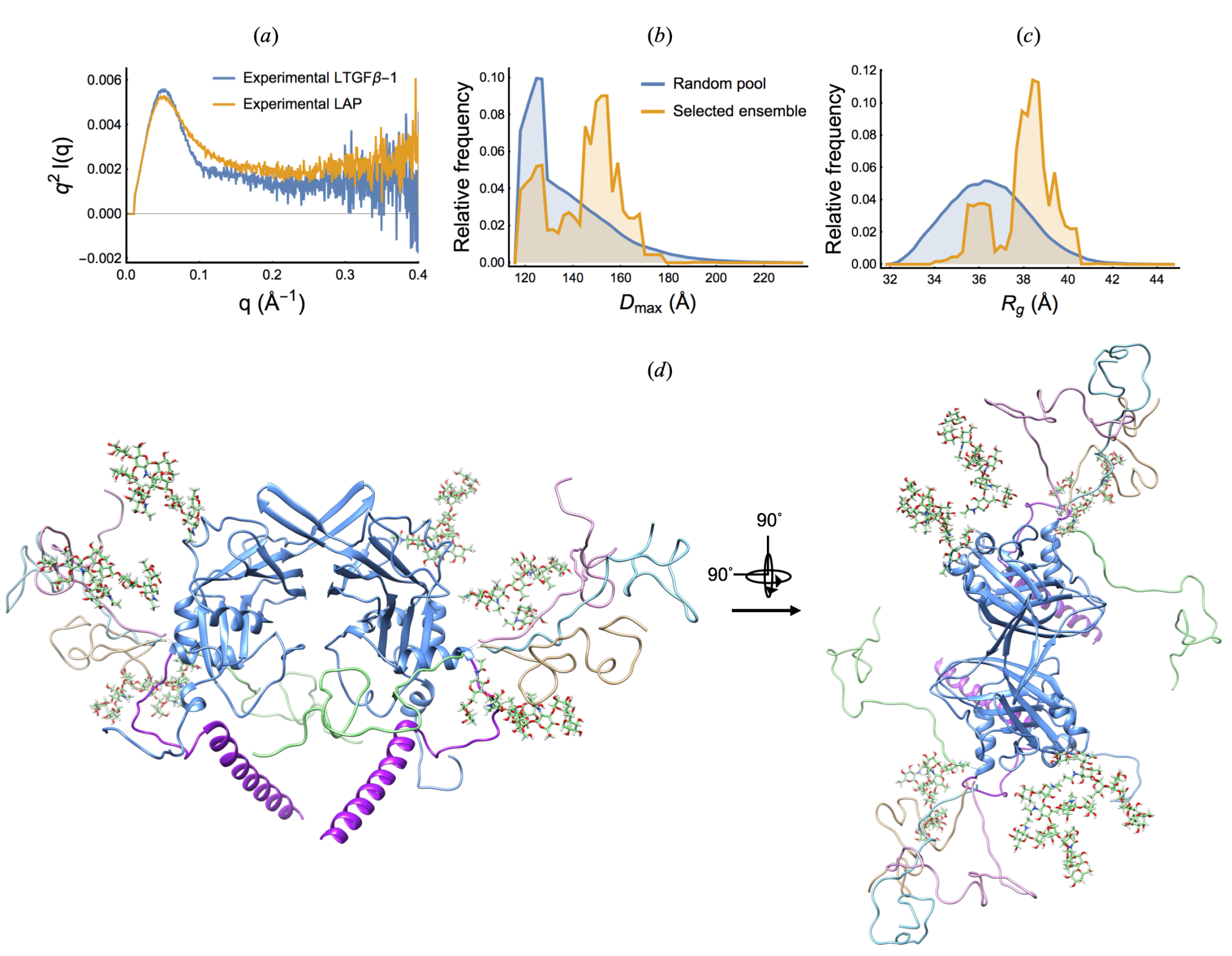 Structural studies of transforming growth factor beta-1 at near-therapeutic X-ray doses