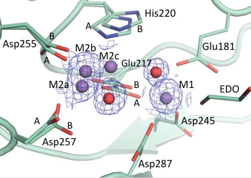 Radiation damage in metalloprotein structures